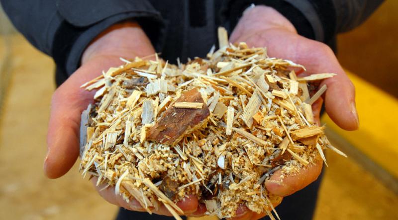 biomass energy plant unbc