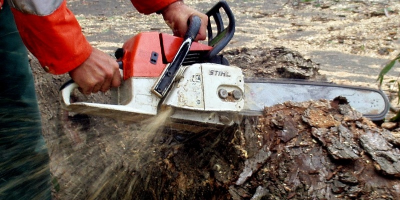 chainsaw operators courses prince george