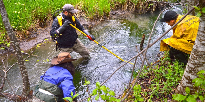 electrofishing online refresher course
