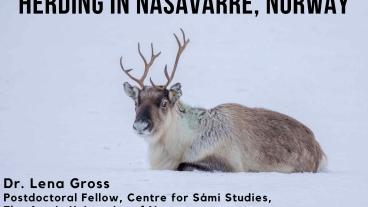 Dr. Lena Gross, Postdoctoral Fellow, Centre for Sami Studies