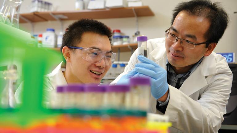UNBC researchers