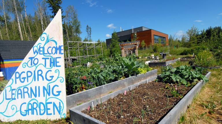 PGPIRG Sustainability Garden and Rooftop Garden
