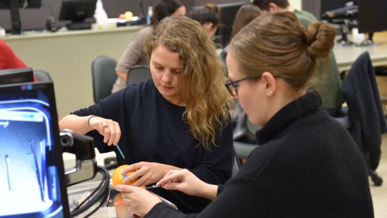 Students testing on an orange