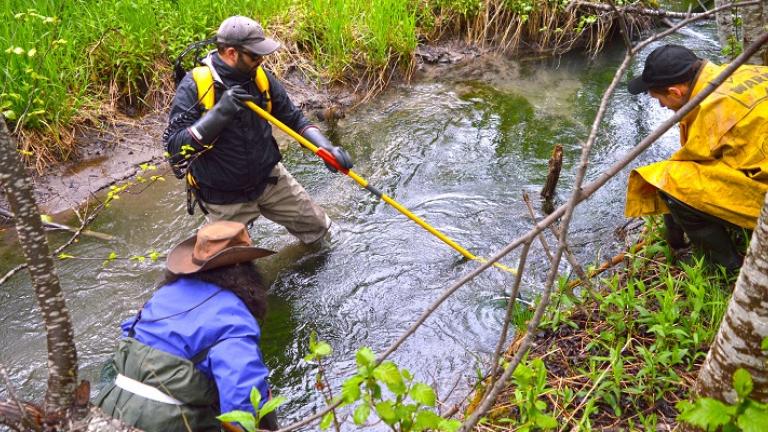 electrofishing online refresher course