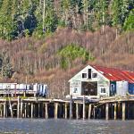 Fort George River Jet Boat Journey