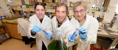 UNBC researchers Elizabeth Dunn, Stephen Rader, and Martha Stark.