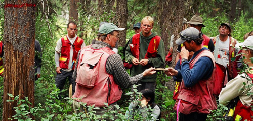 Researchers in the forest