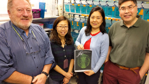 Dr. Andrew Miller, Ms. Ching-Man Chan, Dr. Maggie Wai Ming Li and Dr. Chow Lee.