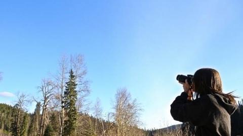 Candyce Huxter takes photos of bats
