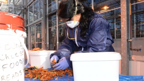 Jessy Rajan sorting food waste