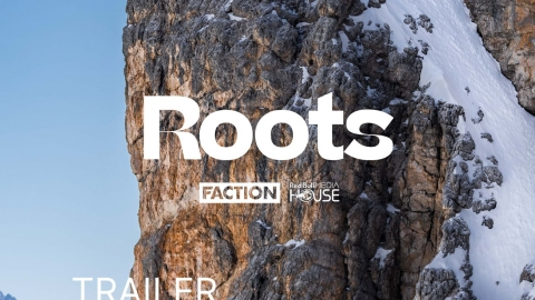 Roots Movie Poster