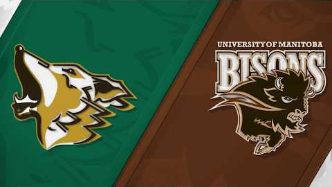 Embedded thumbnail for WSOC: Bisons edge TWolves 2-1 in windy playoff battle